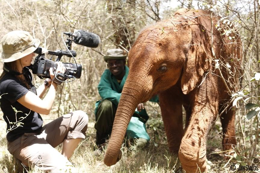 ARCHA SVĚTEL A STÍNŮ, aneb 24 hodin strážcem nosorožců